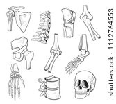 human bones and joints sketch.... | Shutterstock .eps vector #1112764553