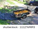 trailer reboque full of orange... | Shutterstock . vector #1112769893
