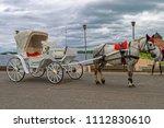 gray horse in harness and chut... | Shutterstock . vector #1112830610