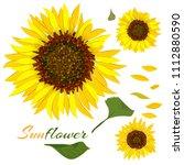 beautiful botanical art... | Shutterstock .eps vector #1112880590