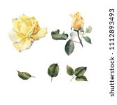 roses and leaves  watercolor ... | Shutterstock . vector #1112893493