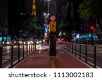 sso paulo  sao paulo   brazil   ...   Shutterstock . vector #1113002183