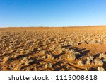 fairy circles  grass and scrub... | Shutterstock . vector #1113008618