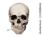 human realistic skull smoking... | Shutterstock .eps vector #1113088646