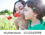 a boy is looking at a flower. a ...   Shutterstock . vector #1113163598