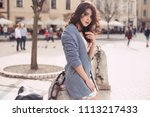 beautiful brunette woman... | Shutterstock . vector #1113217433