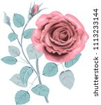 winter  roses _ stylized vector ... | Shutterstock .eps vector #1113233144