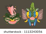 hand drawn vector abstract... | Shutterstock .eps vector #1113243056