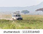 serengeti reserve  tanzania  ...   Shutterstock . vector #1113316460