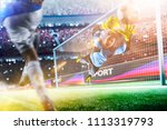 goalkeeper catches the ball on... | Shutterstock . vector #1113319793