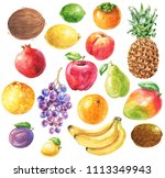 hand drawn watercolor fruits... | Shutterstock . vector #1113349943
