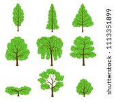 set different crown of a trees... | Shutterstock . vector #1113351899