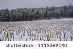 winter landscape bromont quebec ... | Shutterstock . vector #1113369140