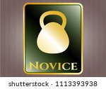 gold shiny emblem with... | Shutterstock .eps vector #1113393938