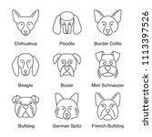 dogs breeds linear icons set.... | Shutterstock . vector #1113397526