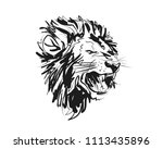 vector sketch lion head | Shutterstock .eps vector #1113435896