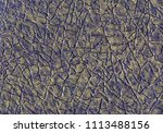 abstract leather background... | Shutterstock . vector #1113488156