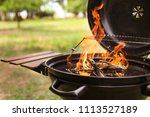 modern barbecue grill with fire ... | Shutterstock . vector #1113527189
