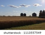 Wheat Field At Happy Acres U...