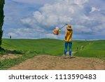 lovely beautiful lady walking... | Shutterstock . vector #1113590483