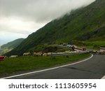 carpathian mountains  romania   ...   Shutterstock . vector #1113605954