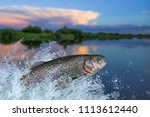 fishing. rainbow trout fish... | Shutterstock . vector #1113612440