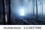 alien in fog night forest.... | Shutterstock . vector #1113657080