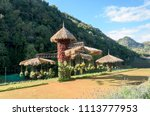 garden designs in high season... | Shutterstock . vector #1113777953