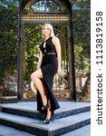 a beautiful blonde young girl... | Shutterstock . vector #1113819158