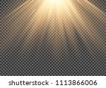 light flare special effect with ... | Shutterstock .eps vector #1113866006