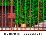 wrought iron gates  ornamental... | Shutterstock . vector #1113866354