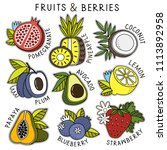 fruits and berries set | Shutterstock .eps vector #1113892958