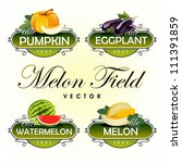 melon  watermelon  pumpkin ... | Shutterstock .eps vector #111391859