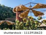 garden designs with hanging... | Shutterstock . vector #1113918623