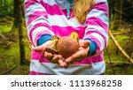 hands of a young blond woman... | Shutterstock . vector #1113968258