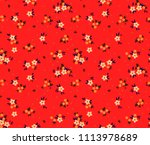 Stock vector floral pattern pretty flowers on red background printing with small white flowers ditsy print 1113978689