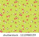 elegant pattern in small... | Shutterstock .eps vector #1113980159