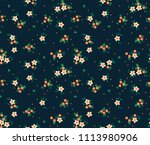 simple cute pattern in small... | Shutterstock .eps vector #1113980906