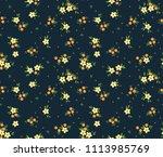 elegant pattern in small... | Shutterstock .eps vector #1113985769