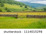 yorkshire dales wildflower... | Shutterstock . vector #1114015298