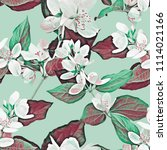 jasmine seamless pattern.... | Shutterstock . vector #1114021166