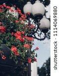 streetlamp looks beautiful... | Shutterstock . vector #1114069880
