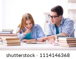 pair of students studying for... | Shutterstock . vector #1114146368