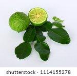 kaffir lime leaves   kaffir...   Shutterstock . vector #1114155278