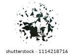 light green vector geometric... | Shutterstock .eps vector #1114218716