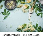 elder flowers  cooking... | Shutterstock . vector #1114250636