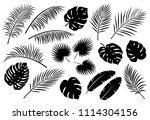 tropical palm leaves set | Shutterstock .eps vector #1114304156