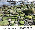 Algae Covered Rocks On A Shore...