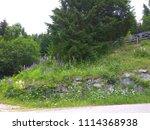 landscape park logar valley  ... | Shutterstock . vector #1114368938