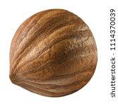 hazelnut isolated closeup as... | Shutterstock . vector #1114370039